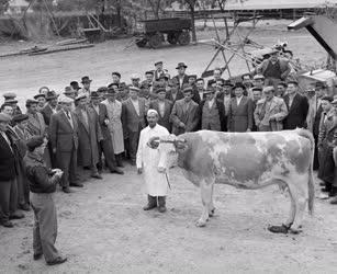 Mezőgazdaság - Tsz-elnökök képzése