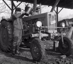 Mezőgazdaság - Téli munkák a jászberényi Kossuth Tsz-ben