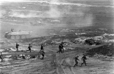 Fegyveres erők - Hadgyakorlat - Pajzs '79