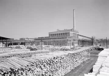 Ipar - Energia - A Cespeli Papírgyár erőműve