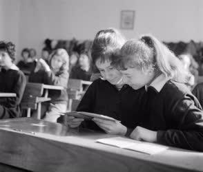 Oktatás - Kosciuszkó Tádé utcai általános iskola