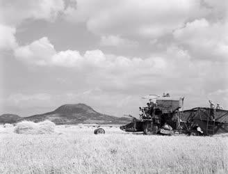 Mezőgazdaság - Befejeződött az aratás Tapolcánál