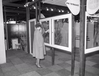 Kiállítás - BNV