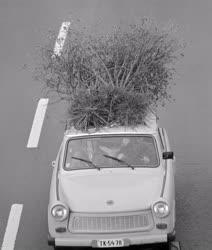 Közlekedés - Trabant az M7-esen