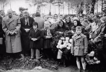 Belpolitika - '56-os forradalom - Mosonmagyaróvár