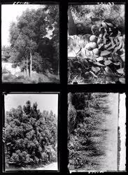 Mezőgazdaság-Természet - Agrimpex album