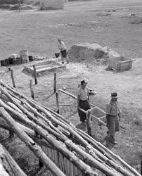 Mezőgazdaság - Sertésfiaztató építése