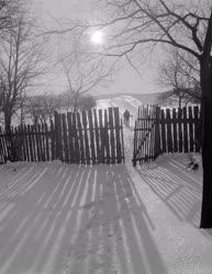 Természet - Tél a Bakonyban