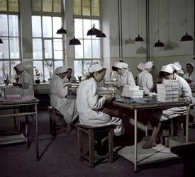 Ipar - Budapesti Illatszer és Pipereszappangyár