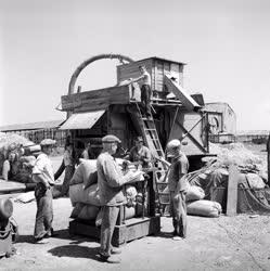 Mezőgazdaság - Gépesített gabonatisztítás