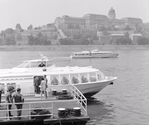 Városkép-életkép - Szárnyashajó a Dunán