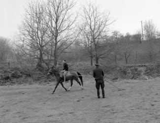 Sport - Ősz a visegrádi lovasiskolában