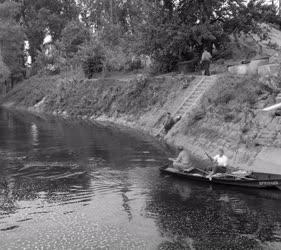 Természet - Sport - Horgászok a Dunán
