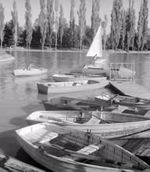 Természet-környezet - Nagyerdei csónakázótó