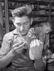 Ipari tanulók - Szegedi papucskészítők