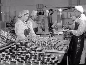 Ipar - Élelmiszeripar - Konzervgyártás - Duna Konzervgyár