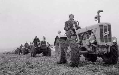 Mezőgazdaság - Szántóverseny Perbálon