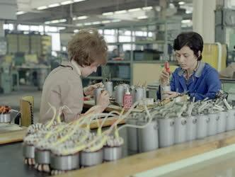 Ipar - Gépgyártás - Az EVIG ceglédi üzemében