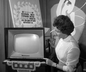 A szerző válogatása - Új rádió és televízió mintaterem