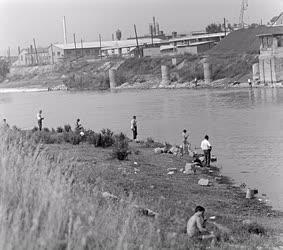 Életkép - Horgászok a Duna-parton
