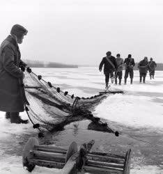 Természet - Mezőgazdaság - Halászok a befagyott Velenci-tó jegén