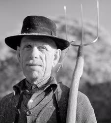 Mezőgazdaság - A Naszályhegyalja Tsz gazdáinak portréi