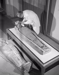 Régészet - Múmia a debreceni Déri Múzeumban