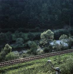 Irodalom - Erdélyi emlékhelyek - Csucsa