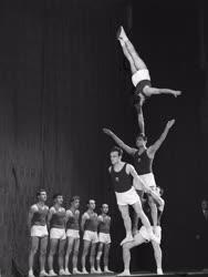 Sport - Dísztorna - Gúlacsapat gyakorlat