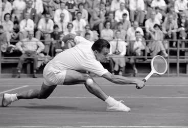 Sport - Tenisz - Magyarország-Svédország