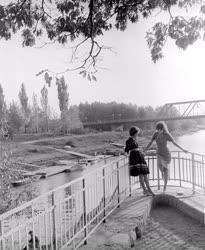 Természet-környezet - A győri Rába-part