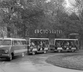 A szerző válogatása - Mikrobusz a Margitszigeten