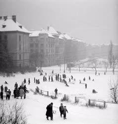 Városkép-életkép - Szánkózók Budapesten