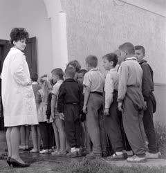 Oktatás - Iskola - Diákok