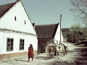 Életkép - Bakonyi falu