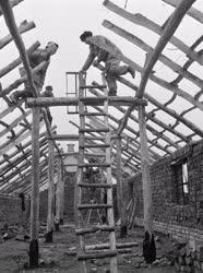 Ipar - Építőipar - Tetőszerkezet ácsolási munkái