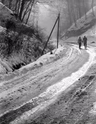 Táj - Lillafüredi út