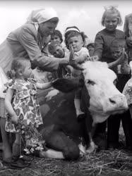 Mezőgazdaság - Állattenyésztés - Gyermeknap a tehenészetben