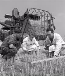 Mezőgazdaság - Mezőgazdasági laboratórium