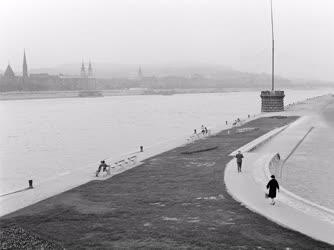 Szabadidő - Séta a Duna-parton