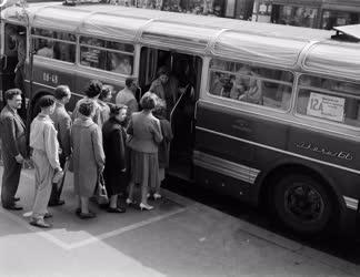 Közelekedés - Fövárosi autóbusz