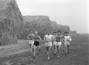 Sport - Futás - Mezei futóbajnokság