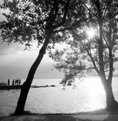 Környzet - A Balaton déli partján