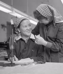 Külkapcsolat - Mongol diákok a Kulich Gyula Ruhaipari Technikumban