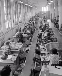 Ipar - Feldolgozóipar - A Tisza Cipőgyár