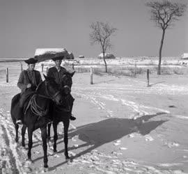 Mezőgazdaság - Csikótelep télen