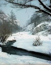 Természet - Szinva-patak a havas Hámori-völgyben