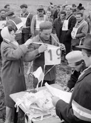 Mezőgazdaság - Első szántóverseny Magyarországon
