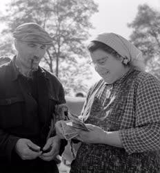 Mezőgazdaság - Állatfelvásárlás Veszprém megyében