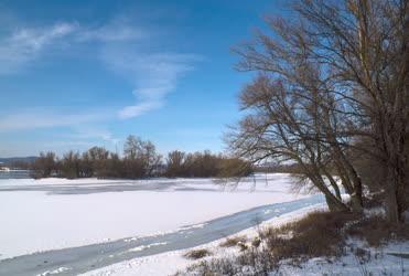 Természet - Zebegény - Jeges Duna